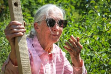 Jane Goodall planted trees on Sas-hegy